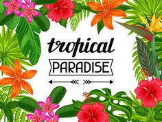 Tropical paradise cards. by  @Graphicsauthor