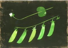 'Good Food: Broad Beans' by Mirthe Blussé