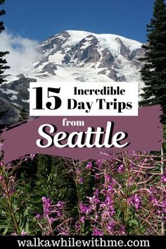Planning to travel to Seattle, Washington? There's an abundance of things to do in Seattle, but if you want some more variety, I have compiled a list of 15 incredible day trips from Seattle. Whether you're taking the trip solo, with your family, or as a girls' trip, spending some time on the west coast road is not something you'd regret #travelseattle #seattle Cascade National Park, North Cascades National Park, Fairhaven Beach, Day Trips From Seattle, Wenatchee National Forest, Travel Usa, Travel Tips, Canada Travel, Travel Guides