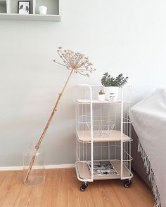 Yeeeeeh!😃 ik heb ook de bakkerskast! Dankzij de liefste mamma! @elizabethuis 💕 blij!! En nu nog leuk inrichten! Fijne zondag iedereen ☉ #interior #bakkerskast #xenos #interieur #interieurstyling #wonen #woonideeën #woonblogger #ilovemyinterior #vtwonenbijmijthuis #flairnl Room Inspiration, Interior Inspiration, Modern Furniture Online, Furniture Design, Apartment Interior Design, New Room, House Rooms, Home Decor Styles, Ideal Home
