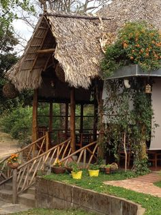 Nicaragua   - Explore the World with Travel Nerd Nici, one Country at a Time. http://TravelNerdNici.com