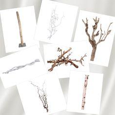 Paastakken, decoratie takken, naturel takken maar ook witte takken. Meerdere hout decoratie om mee te decoreren. www.decoratietakken.nl