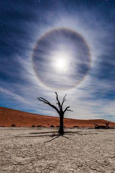 Mesacna Aura,  Deadvlei, Namíbia