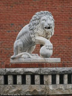 Concrete lion in Kokomo, Indiana USA