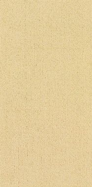 "Tan ""Solid"" carpet border"