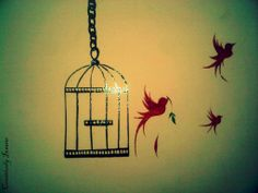 Don't cage your thoughts let them fly !