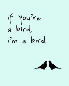if you're a bird, i'm a bird. Absolutely by your side