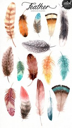 Feather Watercolor Collection by everysunsun on @creativemarket