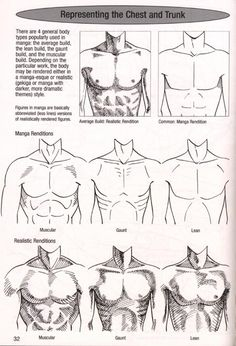 How to Draw the Human Body - Study: Male Chest Types for Comic / Manga Character…