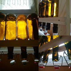 Beer bottle dryer diy