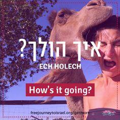 #Hebrew #slang #Israel