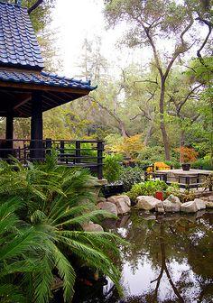 Japanese Garden, Descanso Gardens, La Canada, Los Angeles, California | Rafael…