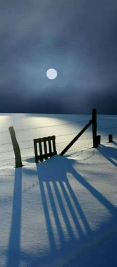 Winter moon shadows
