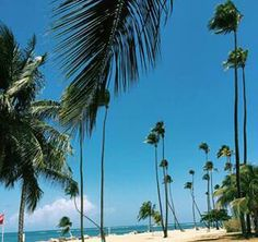 Summer #caribeean