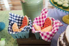 festa infantil gemeos picnic luana mateus inspire-7