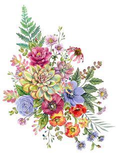 Watercolor Succulents, Watercolor Flowers, Watercolor Art, Cute Wallpaper Backgrounds, Flower Backgrounds, Botanical Flowers, Botanical Prints, Pretty Flower Names, Succulent Tattoo
