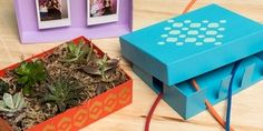 11-cute-ways-you-can-upcycle-past-birchboxes-1636