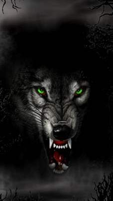 Angry Wolf #animal #emotion - like the quiet mystery of the threat here