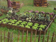 Les différentes astuces pour son jardin potager