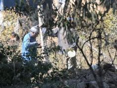 Copy of st illegal miners06.JPG (35642562)