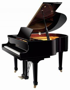 Baby Grand Piano. I would love one.This woul inspire me to play again. I took lessons as a kid, required my mother lol