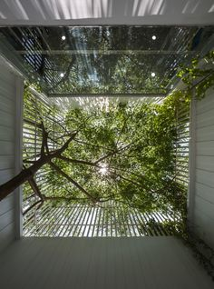 Image 2 of 19 from gallery of Symbiosis / Cong Sinh Architects. Photograph by Hiroyuki Oki Green Architecture, Landscape Architecture, Landscape Design, Architecture Design, Interior Garden, Interior And Exterior, Espace Design, Buddha Wall Art, Courtyard House