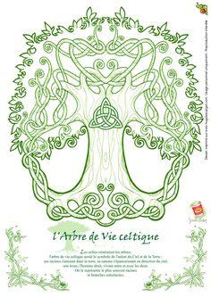Coloriage Arbre De Vie Celte, page 6 sur 32 sur HugoLescargot.com