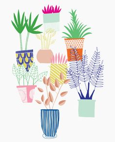 Decorative house plants in pots. Editorial Illustration by Alice Potter