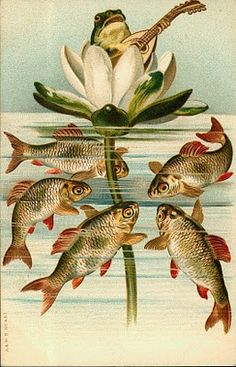 Serenading the fish - Vintage Images Gallery FREE Vintage pictures, photos, and illustrations. Art And Illustration, Frosch Illustration, Illustrations, Images Vintage, Vintage Cards, Vintage Postcards, Vintage Pictures, Koi, Motifs Animal