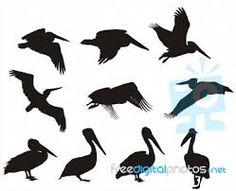 pelican silhouettes - Google Search