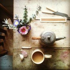 Birds Eye Coffee | UtopianCoffee.com