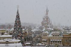 Parisian Disney Paradise