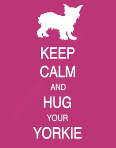 Keep Calm and Hug Your Yorkie by PostersPersonalized on Etsy, $17.00