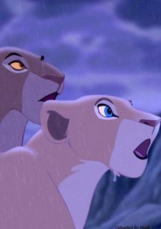 Sarabi And Nala Watching As Simba Takes His Place On Pride Rock