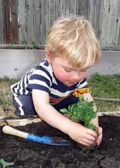 Gardening at age 24 months! Great pics and tips and activities from a NEW mom blogger at the GG Life Journey blog! What garden projects are you doing with your munchkin/s?!
