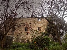 "Photo ""Thehouseofthepomegranates"" by marilenavaccarini"