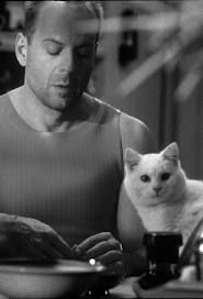 Bruce Willis as Corbin Dallas in The Fifth Element and the cross-eyed cat. Crazy Cat Lady, Crazy Cats, I Love Cats, Cool Cats, Cross Eyed Cat, Celebrities With Cats, Celebs, Men With Cats, Animal Gato