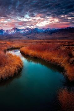 ~~Owens River View ~ Mt Whitney, Big Pine, California by Miles Smith~~