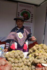 Festival de la Papa Nativa 2013 | Yo Compro En El Mercado de Productores Farmers Market, Marketing, Shopping, Farmers Market Display, Farmers' Market