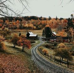 """kristenmerieandacupoftea: """" kristenmerieandacupoftea: """" Yesterday (at Woodstock, Vermont) """" Whoa thanks for all the love on this photo! Autumn Cozy, Farm Life, Belle Photo, Fall Halloween, Countryside, Beautiful Places, Beautiful Pictures, Places To Visit, Seasons"""
