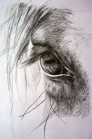 Resultado de imagen para leonardo da vinci dibujos caballos
