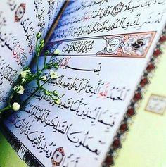 """@a.t28_ - . قال ﷺ """" من قرأ سورة الكهف يوم الجمعة جعل الله له نورا من قدميه إلى السماء """"  #الكهف #الجمعة#doaamuslim @doaamuslim #دعاء_المسلم"""