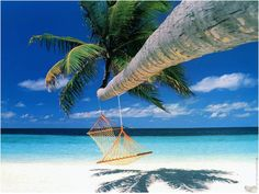 awesome Thailand offers stunning cheap luxury holidays