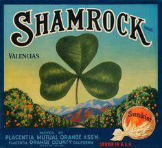 Items similar to Shamrock Sunkist Navels Vintage Crate Label, on Etsy Posters Vintage, Vintage Labels, Vintage Signs, Vintage Ads, Vintage Prints, Vintage Images, Vintage Food, Vintage Type, Vintage Clip