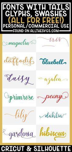 Free Fonts For Cricut, Cricut Fonts, Cricut Vinyl, Cricut Help, Silhouette Cameo Projects, Silhouette Studio, Cricut Tutorials, Cricut Ideas, Cursive Calligraphy