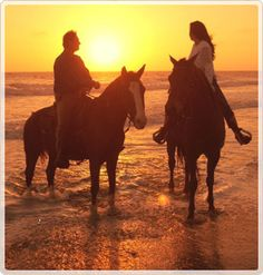 Dolphin Bay Resort & Spa - Pismo Beach Hotels - Recreation - Pismo Dunes