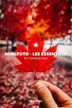Dans ce dossier, nous vous proposons un tutoriel écourté, reprenant les différents points que nous jugeons essentiels et les éléments auxquels vous devez faire attention. À chaque étape, vous retrouverez un lien vers le chapitre correspondant du tutoriel complet pour retrouver des explications plus précises sur telle ou telle partie de votre demande. Nous ne reviendrons pas en détail ici sur le principe du PVT Canada, son fonctionnement et les étapes de la demande. Pvt Canada, Mini, Attention, Points, Articles, Pen Pal Letters, Tips
