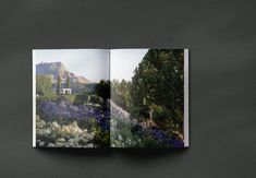 Coffee table book on the New Zealand Landscape designer Suzanne Turley. Edited and designed by Thomas Cannings. Published by Thames & Hudson. Photography by Thomas Cannings New Zealand Landscape, Coffee Table Books, Private Garden, Editorial Design, Creative Director, Art Direction, Landscape Design, Canning, Landscaping