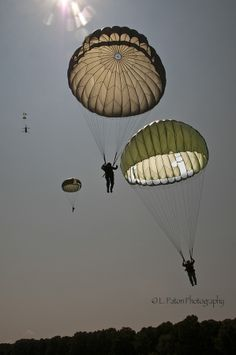 Copyright: L. Paton Photography 2014 All rights reserved. Airborne Army, Airborne Ranger, 82nd Airborne Division, Military Quotes, Military Life, Military Art, Estilo Chola, Parachute Regiment, Military Drawings