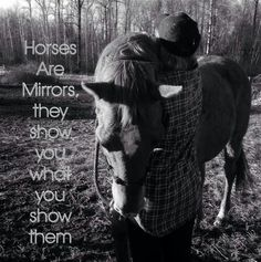 Horses are mirrors :) i love mine, theyre both so sweet to me.